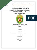 DETENCION POLICIAL 10PG