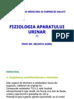 Fiz_A2S2_C01_Rinichiul