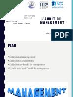 Laudit-de-management (1)