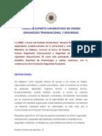 CURSO EXPERTO UNIVERSITARIO EN CRIMEN ORGANIZADO TRANSNACIONAL Y SEGURIDAD Postgrado. Convocatoria 2011 / 2012