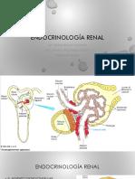 2 Endocrinología Renal