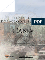 O Brasil dos agrobcombustíveis- impactos das lavouras- cana-de-açúcas. CENTRO DE MONITORAMENTO DE AGROCOMBUSTÍVEIS
