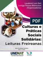 Culturas e Práticas Sociais Solidárias EBOOK