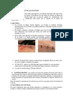 PRINCIPIOS BASICOS DE LAS SUTURAS