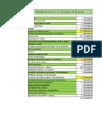 informe y estado de costos (1)