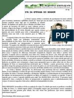 Jornal 26