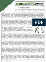 Jornal 28