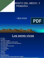 CONOCIMIENTO DEL MEDIO  5 PRIMARIA