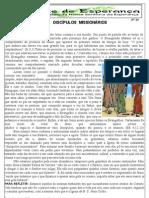 Jornal 29