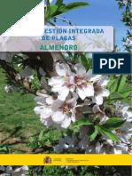 guiadealmendroweb_tcm30-57951