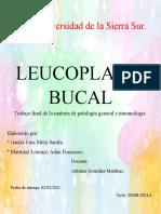 LEUCOPLASIA BUCAL
