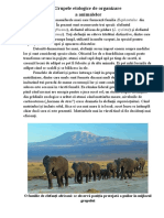 Grupele etologice de organizare a animalelor