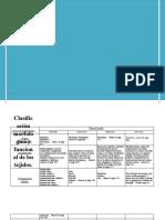Clasificación de los tejidos y hojas embrionarias