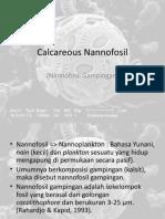 Calcareous Nannofosil