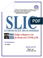 Rapport SLIC