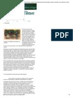 A interface música, cérebro, neurodesenvolvimento e saúde-por Paulo Estevão Andrade e Elisabete Castelon Konkiewitz » Neurociências em Debate