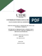 T-UIDE-0034