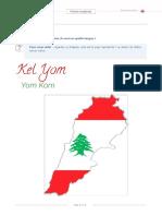 DF2020-Liban-A2-Materiel