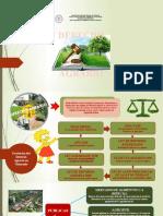 Mapa_Mental_Derecho Agrario