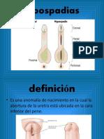 enfermedades aparato reproductor