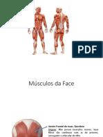 Músculos Origem, Inserção e Ação (3)