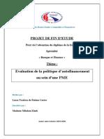 PFE politique d'autofinancement  PME