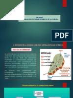 Semana 5. La Cuenca Hidrografica Como Un Sistema