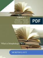 ppt morphology (1)