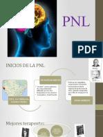 pnl h