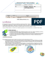 GUIA BIOLOGIA 1 primer periodo 2021