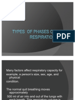 Types of Phases of Respiration