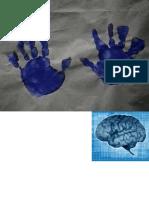 Brain fingerprinting.ppt
