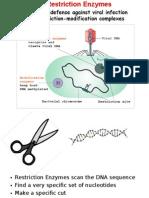 DNA methodsFS302
