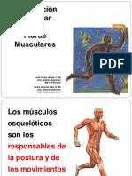 4.-Contracción-muscular-y-fibras-musculares-JCGT-CENG