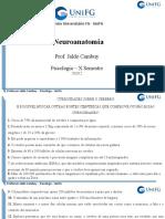 NEUROANATOMIA 2020