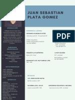 Cv Sebastián Plata