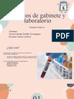 Estudios de Gabinete y Laboratorio