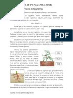 CN Guía 3° n°28 24-08 al 28-08
