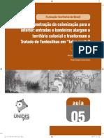 """A penetração da colonização para o interior - entradas e bandeiras alargam o território colonial e tranformam o Tratado de Tordesilhas em """"letra morta"""""""