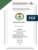 FICHA DE OBSERVACION-1