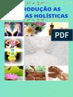 INTRODUÇÃO AS TERAPIAS HOLÍSTICAS