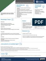 Formato Definicion y Caracteristicas POL