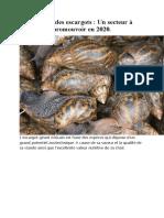 Élevage des escargots SECTEUR PORTEUR