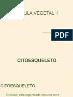 aula_celula_vegetal_2
