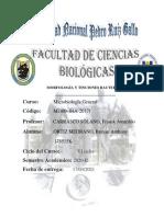 MICROBIOLOGÍA PRÁCTICA-MORFOLOGIA Y TINCIONES BACTERIANAS