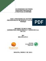 INFORME FINAL SUMINISTROS INDUSTRIALES 65 PROGRAMA GESTION D