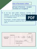 FISH ENDOCRINOLOGY