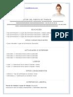 modelo-curriculum-sin-experiencia15