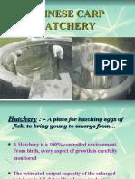 Chinese Circular Fish Hatchery
