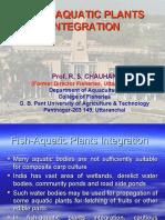 Fish-Aquatic Plants Integration